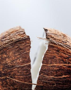 hindistan cevizi yağı